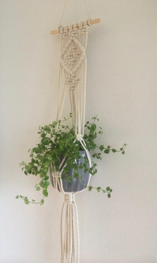 Curso online Colgador de plantas para paredCurso Macetero colgante para pared. online