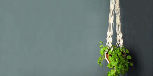 Colgador de planta de macramé